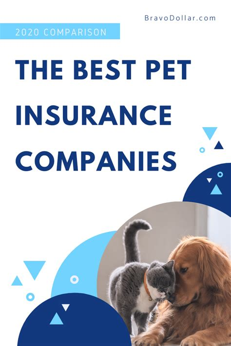 When you avail of a pet insurance policy with nationwide, you can go to any veterinarian across the world. The Best Pet Insurance Companies for 2020 (With images)   Pet insurance