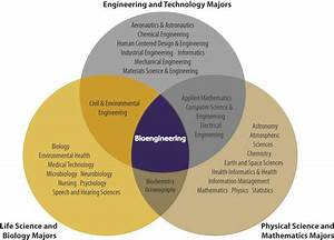 Is Bioengineering Right For Me