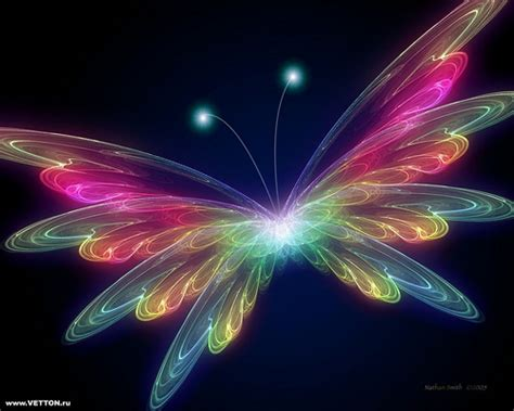 Cool Car Wallpapers For Desktop 3d Animal by Cool Fractal Butterfly Wallpaper Pics Hd Wallpaper