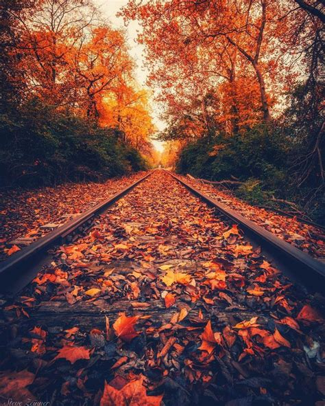 beautiful fall photography pinterest