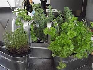 Plante Pour Appartement : dossier un potager dans mon appartement partie 1 ~ Zukunftsfamilie.com Idées de Décoration