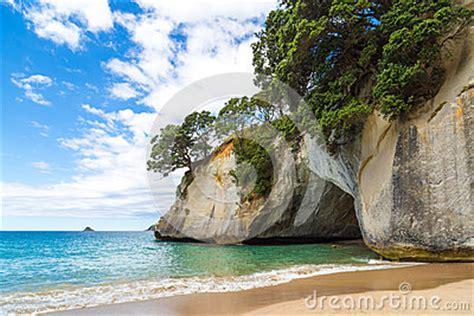 neuseeland höhle der glühwürmchen eine h 246 hle auf dem strand in der kathedralen bucht neuseeland stockfoto bild 39852858