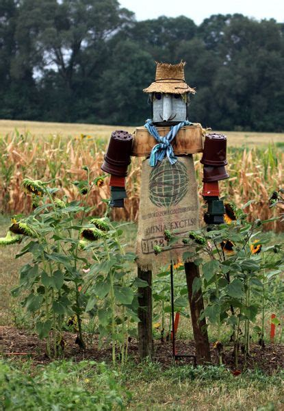 168 Best Images About Scarecrow Ideas On Pinterest  Gardens, Pumpkins And Halloween