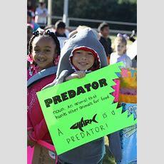Vocabulary Parade Information!  News  West Defuniak Elementary