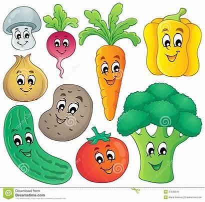 Vegetable Theme Illustration Vector