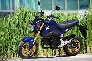 Petite Moto Honda : honda msx 125 ~ Mglfilm.com Idées de Décoration
