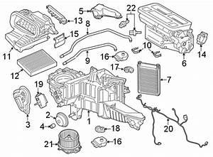 Ford F-150 A  C Evaporator Drain
