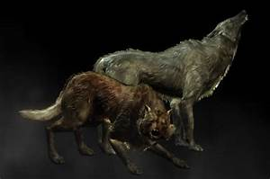 Wolf Howls And Growls At Skyrim Nexus