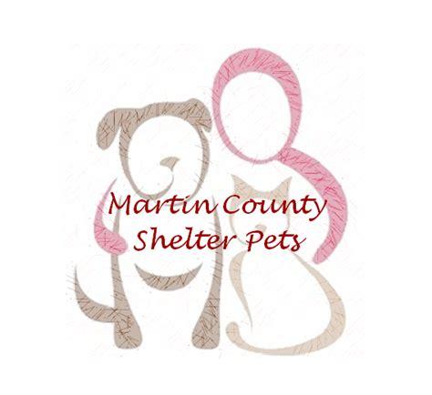 martin county shelter animals home facebook