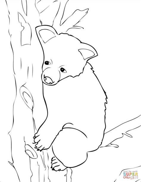disegno  orso bruno da cucciolo da colorare disegni da