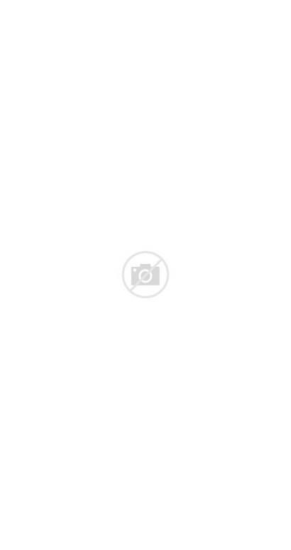 Children Gummy Gummies Vitamins Multivitamin Bear Daily
