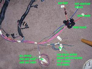 Painless 60502 Lt4 Lt1 Fuel Injection Wiring Harness