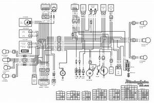 Kymco Agility 50 Wiring Diagram With