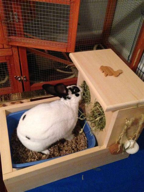 rabbit hay feeder  litter box sir basil money bunny