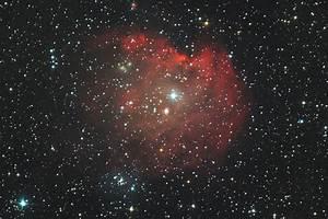 NGC2175 The Monkey Head Nebula - Imaging - Deep Sky ...