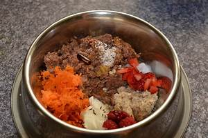 Nudeln Für Hunde : rhodesian ridgeback the soul of africa so f ttern wir unsere hunde ~ Watch28wear.com Haus und Dekorationen