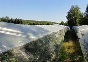 Bache Anti Herbe Sous Gravier : b che anti pluie filet alt mouches protection contre l ~ Edinachiropracticcenter.com Idées de Décoration
