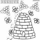 Bee Coloring Pages Beehive Colorings Coloringway sketch template