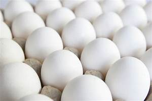4 Ever-confused Facts About Eggs | WorkoutTrends