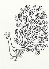 Peacock Outline Glass Painting Drawing Coloring Getdrawings sketch template
