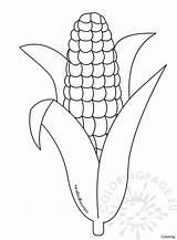 Corn Coloring Printable Candy Cob Stalk Drawing Template Shocks Thanksgiving Getdrawings Sheet Trinity Getcolorings Popcorn Drawings Sketch Paintingvalley Templates Coloringpage sketch template