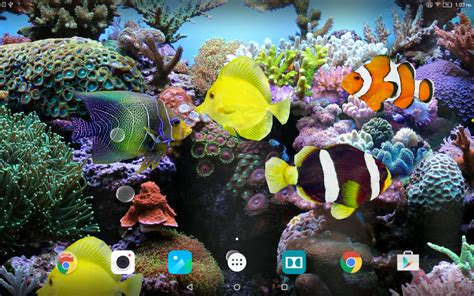 3d Animated Fish Wallpaper - coral fish 3d live wallpaper apk for android