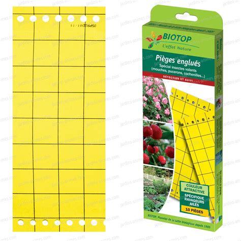 produit contre les moucherons cuisine piège chromatique jaune contre les mouches anti mouche