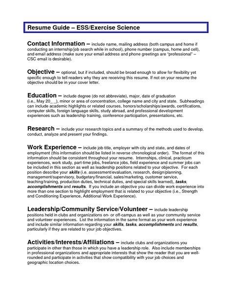 Sample Resume Objectives  Resume Badak