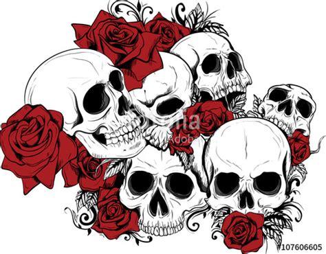 teschi  rose stock image  royalty  vector