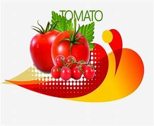 Diseño de dibujos animados de tomate, Diseño De Dibujos ...