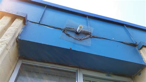 one way bat door large apartment building in ypsilanti mi with bats in the