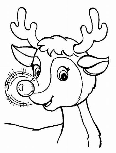 Reindeer Coloring Christmas Nose Glowing Pages