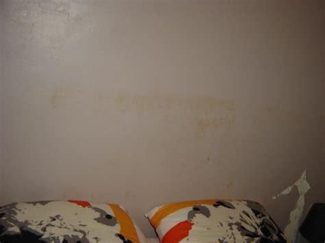 chambre brune taches brunes et de moisi sur murs