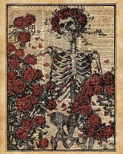 Skeleton Art, Skeleton With Roses Book Art,human Anatomy ...