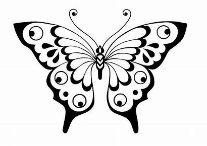 Butterfly Stencil Template Printable Drawing Coloring Pages