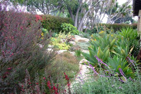 dallas water utilities water wise landscape
