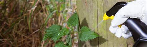 treat  rid  weeds love  garden