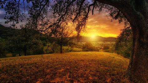 Download Free HD Beautiful Morning Desktop Wallpaper In 4K ...
