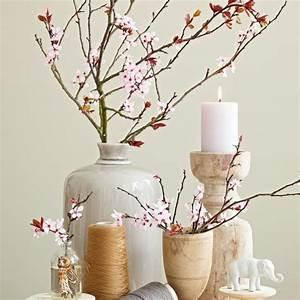 Vasen Dekorieren Tipps : barbarazweige schneiden pflegen dekorieren living at home ~ Eleganceandgraceweddings.com Haus und Dekorationen