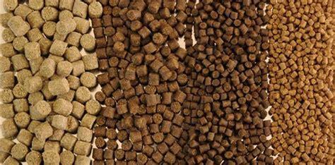 Pelleted Aquatic Feed Vs. Extruded Aqua Feed