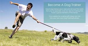 learn to train dogs become a professional dog trainer k9 With become a dog trainer