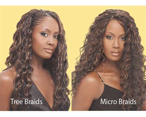 Tree Braids vs Micro Braids | iLookWar.com