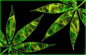 Marijuana Cannabis Leaf Art