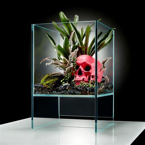Okeanos Aquascaping by Elevate Terrarium Pink Skull Diy Kit Okeanos