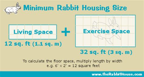 home building plans free planning a rabbit cage
