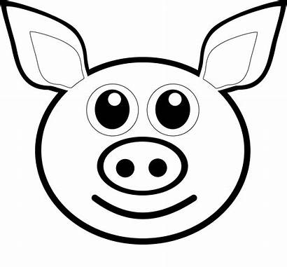 Pig Face Clipart Clipartpanda Pink Terms
