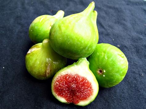 types of figs fig varieties collection trees of joy figs pinterest