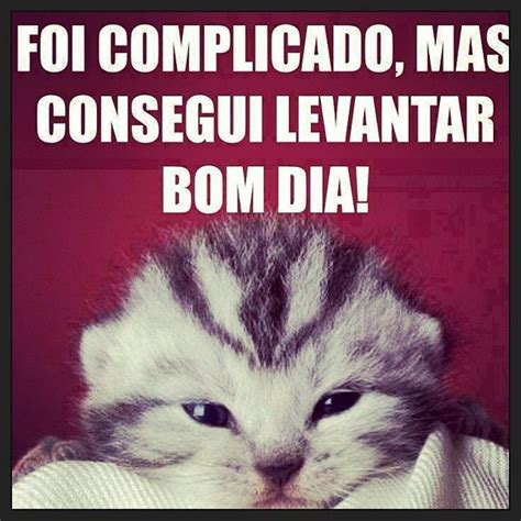 andros si鑒e social 17 best images about mensagens de bom dia on te amo boas and