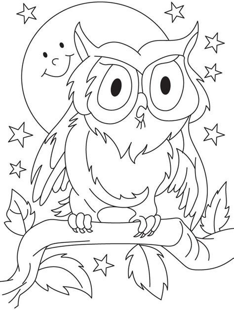 owl outline drawing coloring home