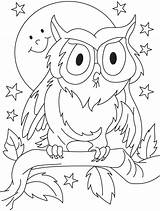 Coloring Pages Owl Summer Preschool Preschoolers Sheets Clipart Drawing Para Printable Outline Cute Baby Colouring Colorir Owls Colorear Toddlers Sketch sketch template